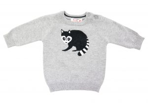 Boy's Racoon Jumper - Plum